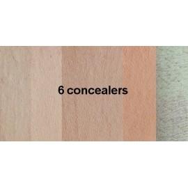 Zes Concealers, Unity Cosmetics
